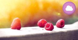 EXPERTO UNIVERSITARIO EN DIETÉTICA Y NUTRICIÓN HUMANA