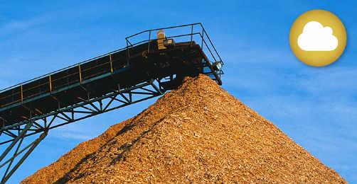 Operación de plantas industriales y energéticas de Biomasa
